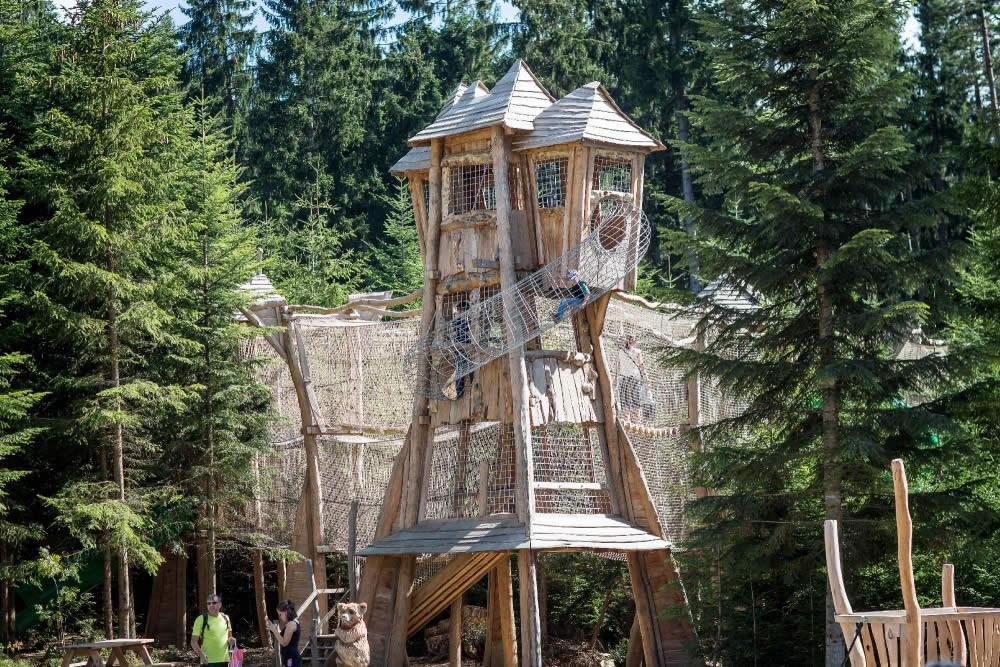 Království Lesa