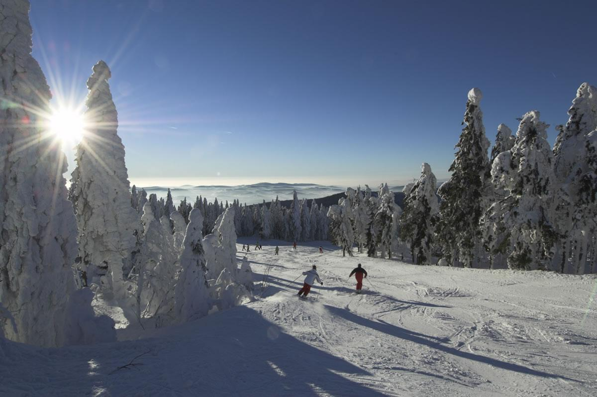 Skiareál Hochficht